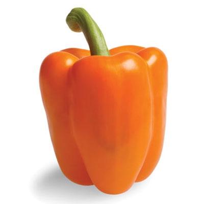 Orange Glory